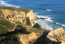 Torrey Pines State Beach, California