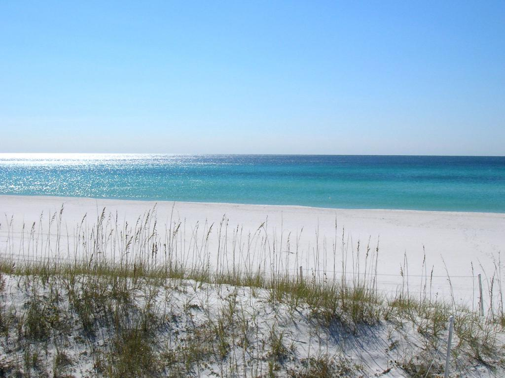 Panama City Beach, Florida Wallpaper #1 1024 x 768