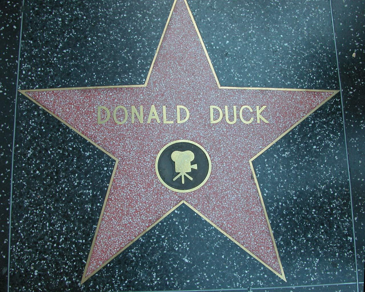 Los Angeles - Donald Duck on Walk of Fame Wallpaper #3 1280 x 1024
