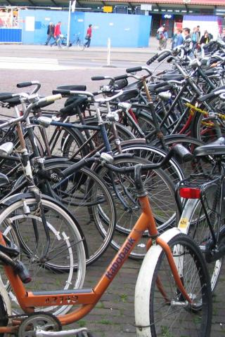 Amsterdam - Bicycles Wallpaper #1 320 x 480 (iPhone/iTouch)