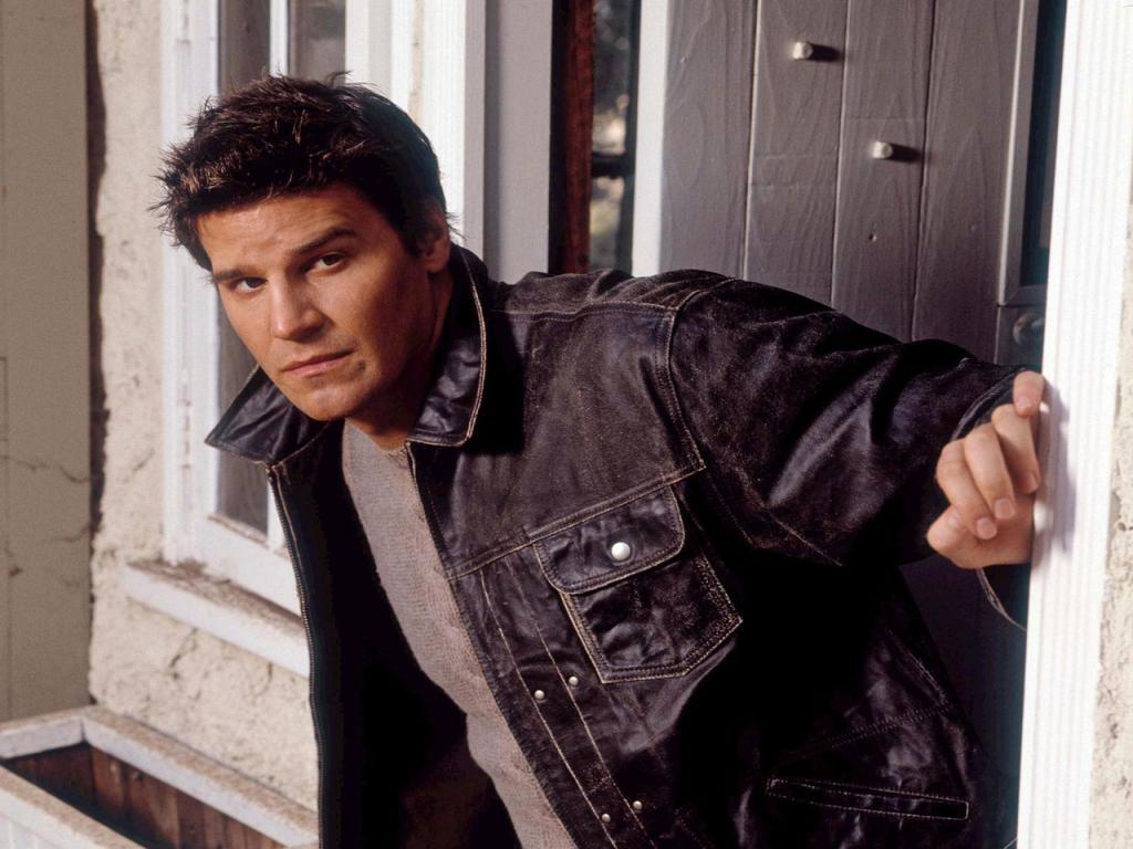 David Boreanaz Wallpaper #4 1024 x 768